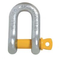 D Shackle S Grade Yellow Screw Pin 22 x 25mm